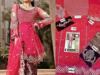 Designer Embroidered Net Dress in Pakistan