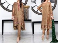 Designer Embroidered Chiffon Dress in Pakistan